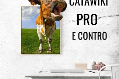 recensioni catawiki ebay