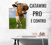 CATAWIKI & EBAY CONFRONTO