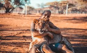 Molla- tutto-e-va-a-vivere-con-i leoni