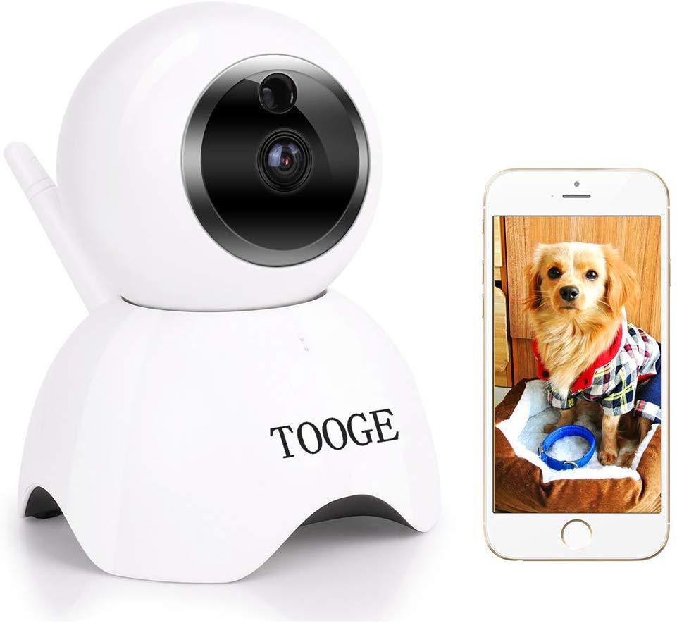 telecamere per animali domestici